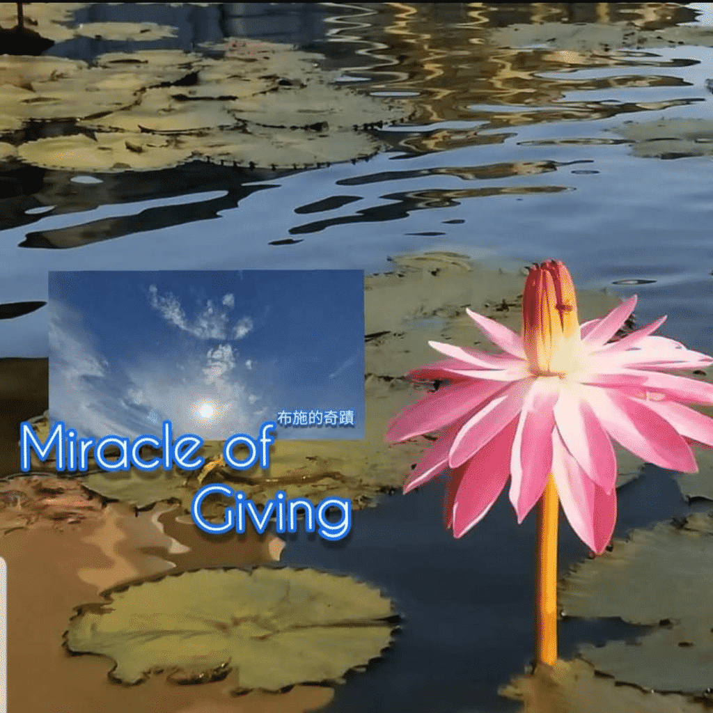 Miracle of giving
